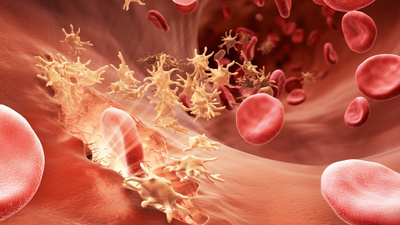 Воспаление и занесение инфекции от пирсинга языка – фото, лечение