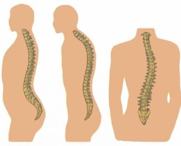 Болит левый бок под ребрами – причины и лечение