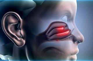 Язвы в носу и вокруг него – причины, лечение
