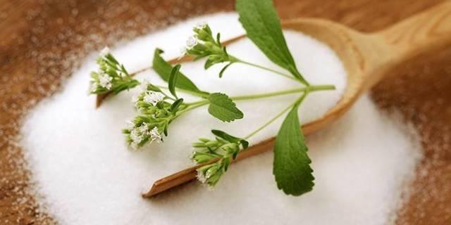 Стевия при диабете 2 и 1 типа сахарном: вред и польза, можно ли употреблять траву в чай, в порошке, как принимать