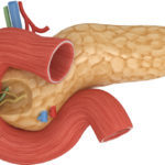 Лук при диабете сахарном 2 и 1 типа: можно ли есть печеный, жареный, настой, репчатый, красный, шелуха